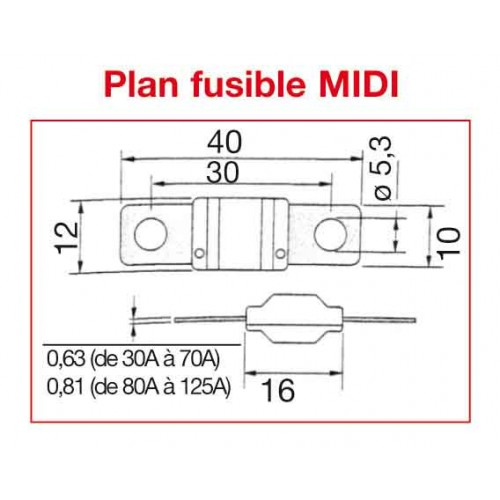 FUSIBLE MIDI 70 AMPERES x10