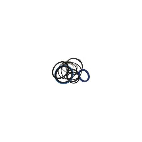 Pochette de joints VI (11196328) Erhel 11196328